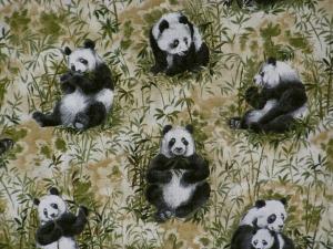 Portrait of the Wild Panda FAT 50x55cm,weiss